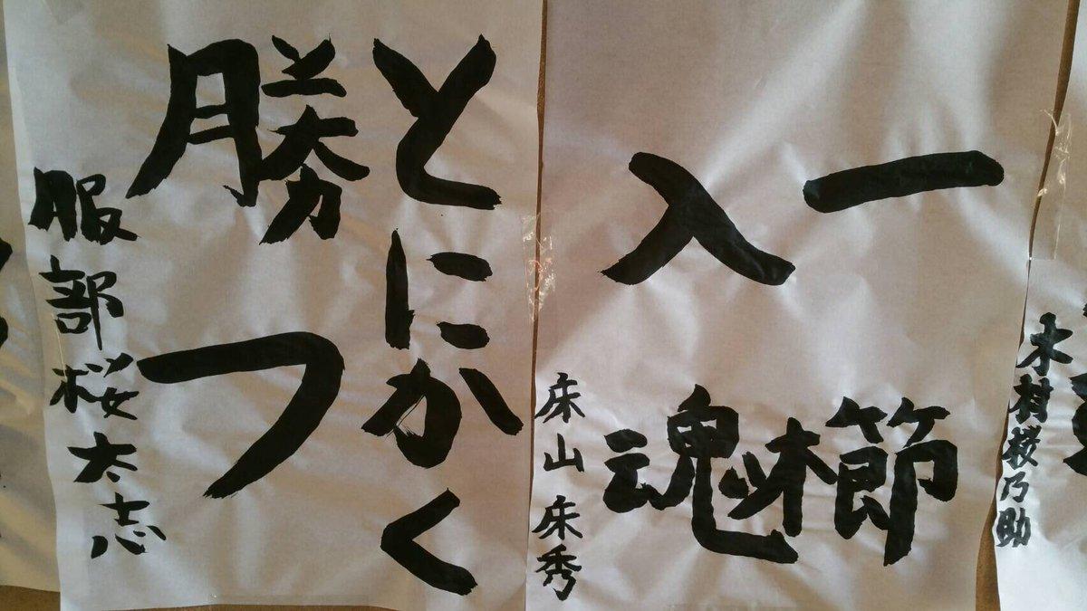 【服部桜】2勝目なるか?2017年初場所の取組結果と過去の成績まとめ