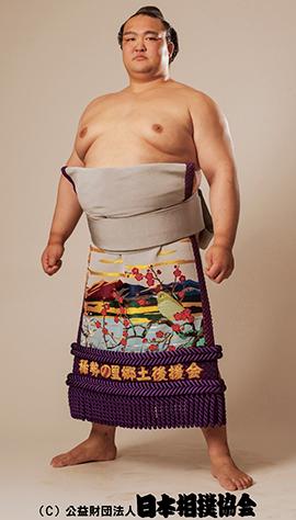 【稀勢の里】身長・体重・年齢に優勝回数は?白鵬・日馬富士・鶴竜と比較した