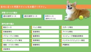 稲見萌寧の出身高校や大学はどこゴルフ日本代表の学歴をまとめ!
